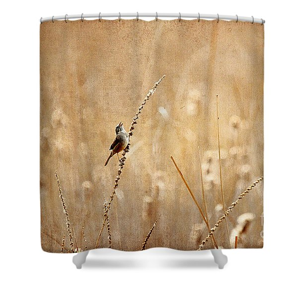 All Rejoicing Shower Curtain