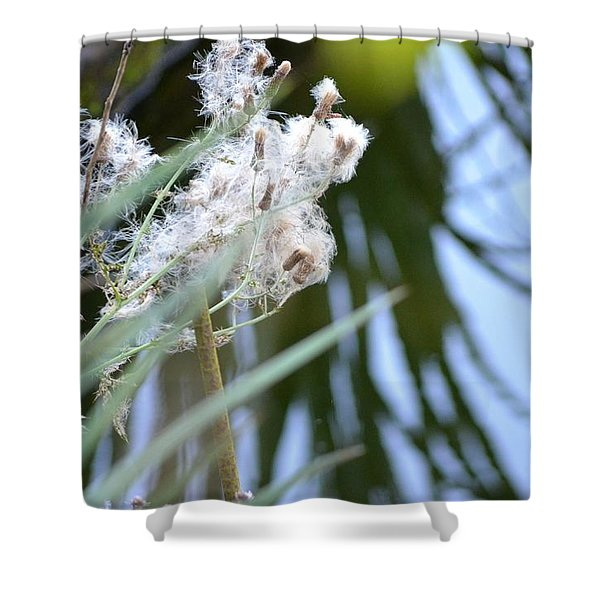 All The World Is Fluff And Posture Shower Curtain