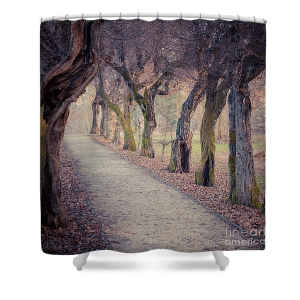 Alley - Square Shower Curtain