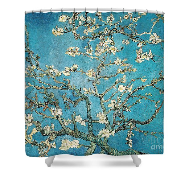 Almond Branches In Bloom Shower Curtain