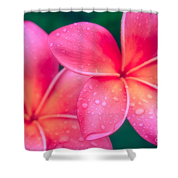 Aloha Hawaii Kalama O Nei Pink Tropical Plumeria Shower Curtain
