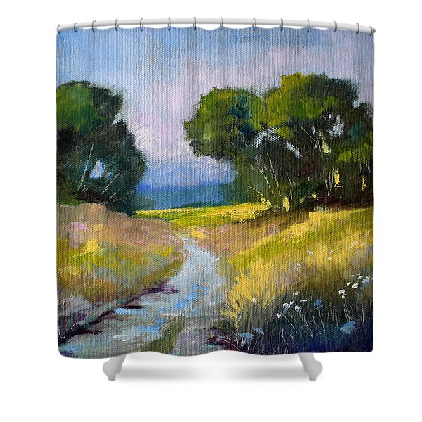 Along A Country Road Shower Curtain