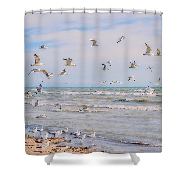 Along The Beach Shower Curtain