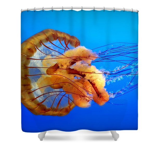 Amber Seduction Shower Curtain