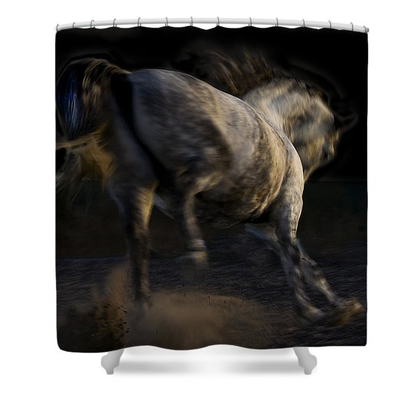 Americano 12 Shower Curtain