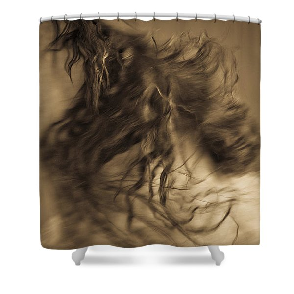 Americano 15 Shower Curtain