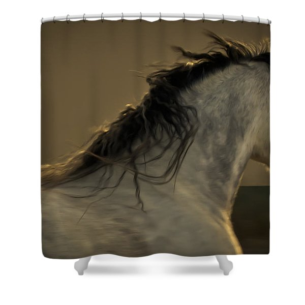 Americano 4 Shower Curtain
