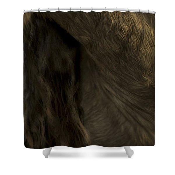 Americano 5 Shower Curtain
