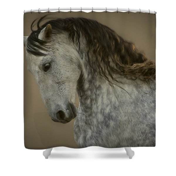 Americano 6 Shower Curtain