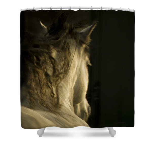 Americano 7 Shower Curtain