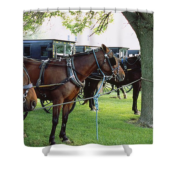 Amish Buggies And Horses Parked Shower Curtain