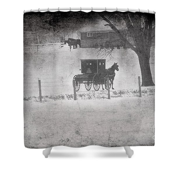 Amish Buggy Winter January 2014 Shower Curtain