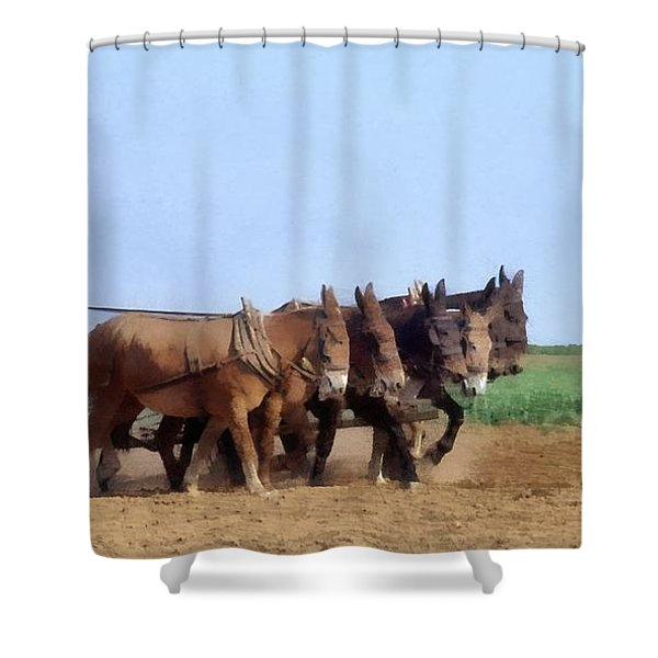 Amish Man Plowing The Fields Shower Curtain