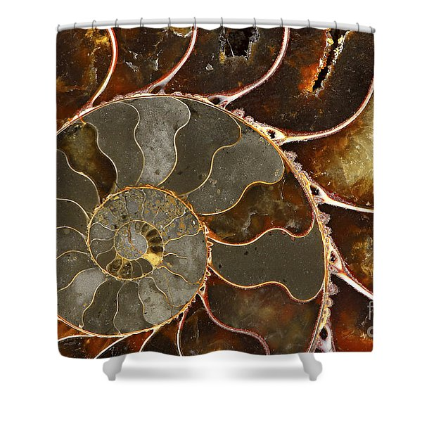 Ammolite Shower Curtain