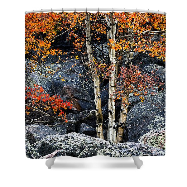 Among Boulders Shower Curtain