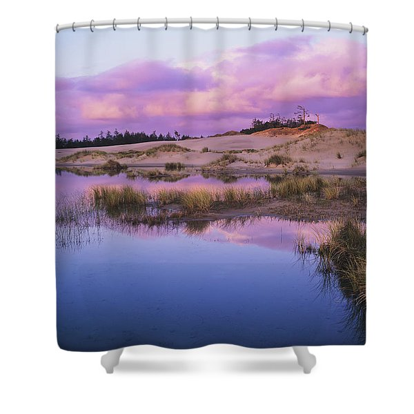 An Ephemeral Pool Reflects The Morning Shower Curtain