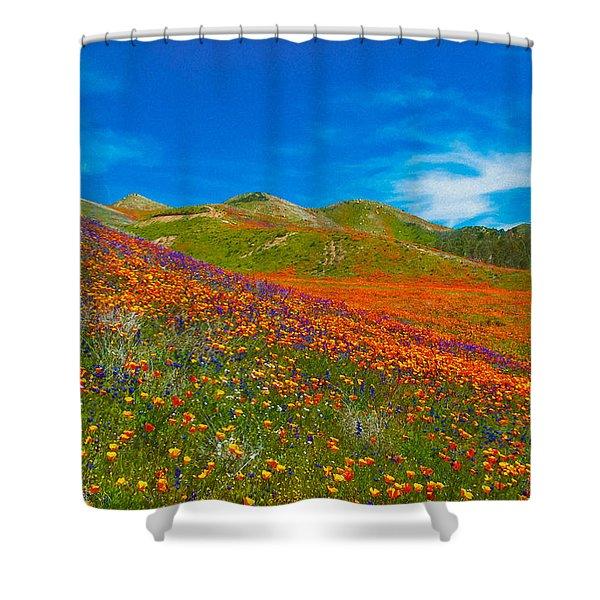An Ocean Of Orange  Shower Curtain