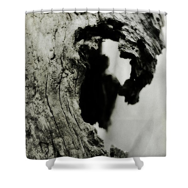 Ancient Goddess Shower Curtain