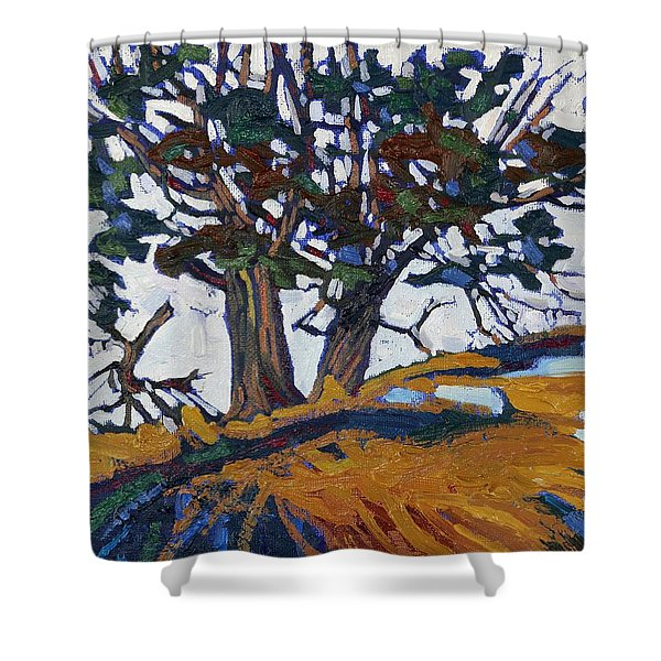 Ancient Red Cedars Shower Curtain