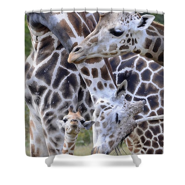And Baby Makes Three Shower Curtain