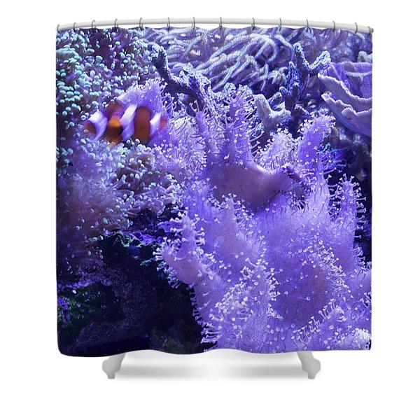 Anemone Starlight Shower Curtain