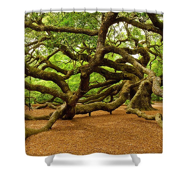Angel Oak Tree Branches Shower Curtain