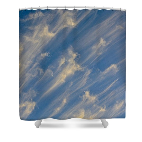 Angels Trumpets Shower Curtain