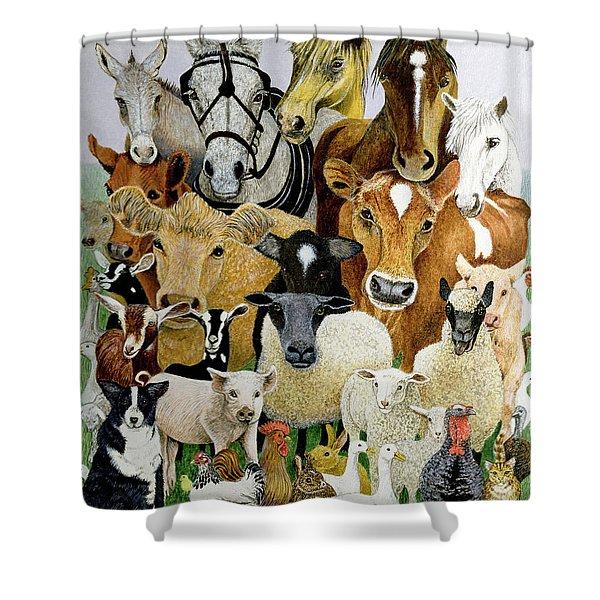 Animal Allsorts Oil On Canvas Shower Curtain