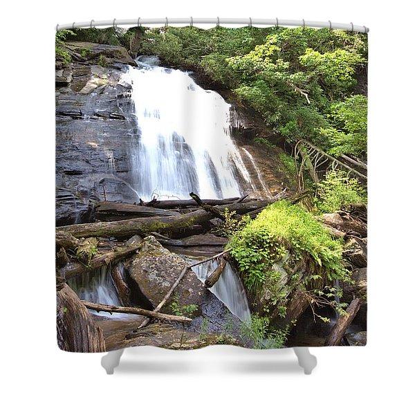 Anna Ruby Falls - Georgia - 4 Shower Curtain
