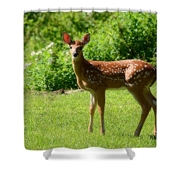 Another Reason To Love Spring Shower Curtain