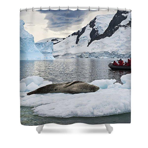 Antarctic Serenity... Shower Curtain