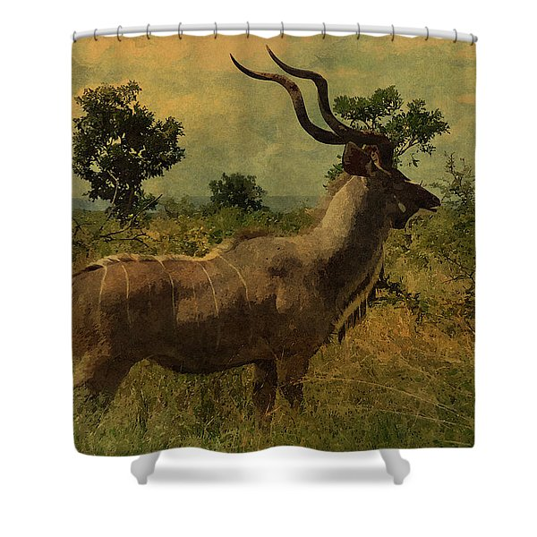 Antelope Shower Curtain