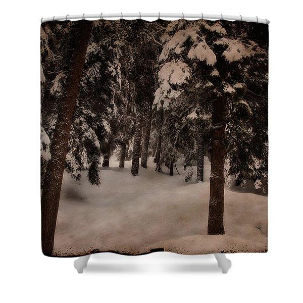 Antique Woodscape Shower Curtain