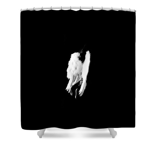 Anyas Wings  Shower Curtain