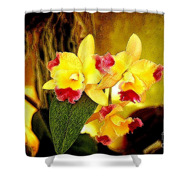 Aos Yellow Orchid 1 Shower Curtain