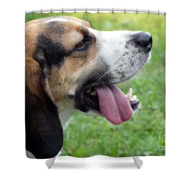 Apollo Is Hot Shower Curtain
