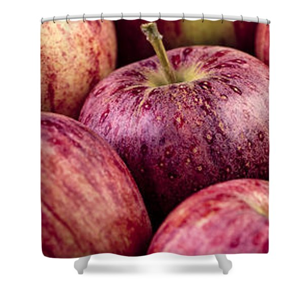 Apples 02 Shower Curtain
