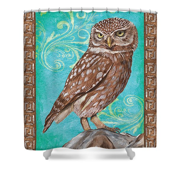 Aqua Barn Owl Shower Curtain