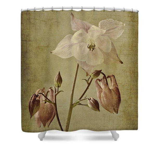 Aquilegia Vulgaris With Textures Shower Curtain