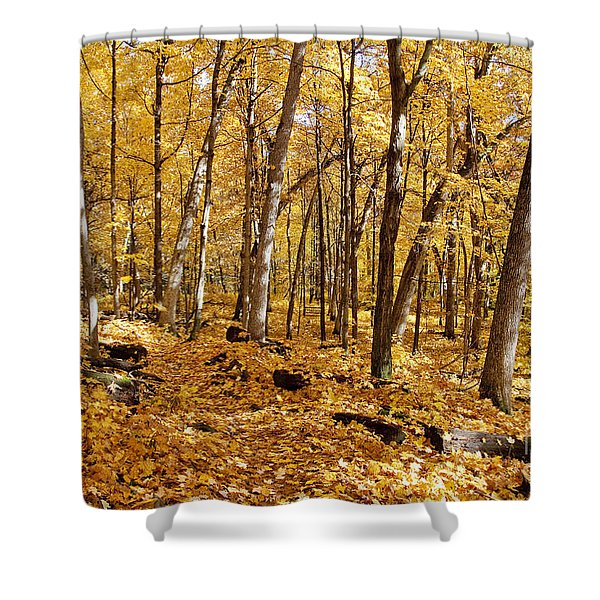 Arboretum Trail Shower Curtain