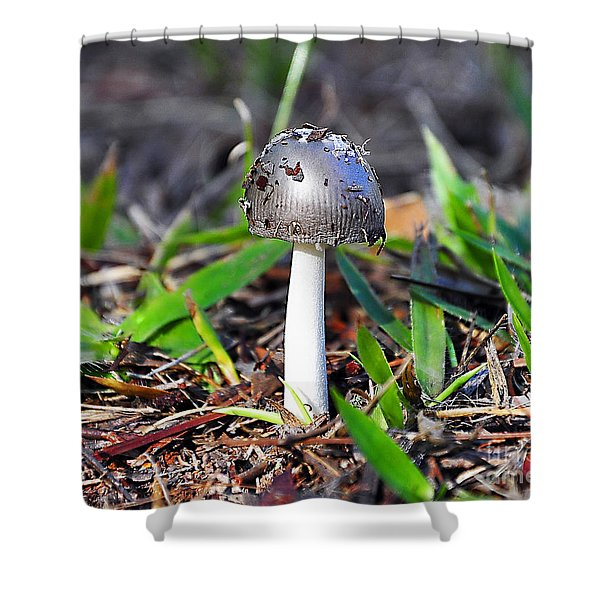 Argent Amanita Shower Curtain