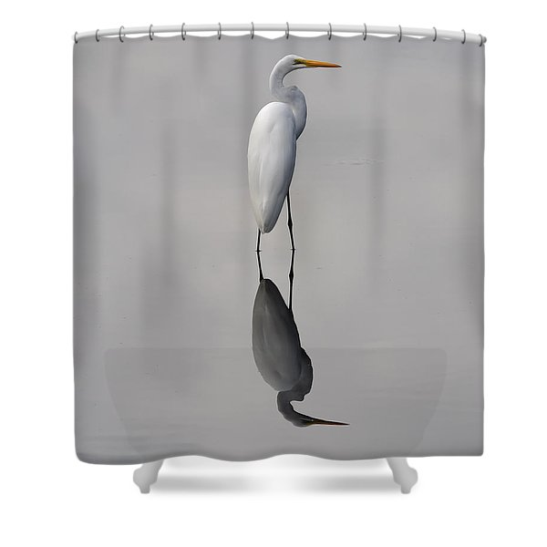 Argent Mirror Shower Curtain