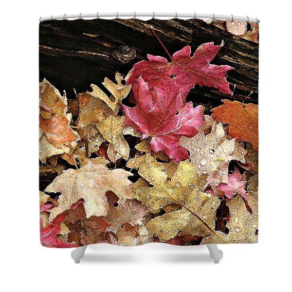 Arizona Fall Colors Shower Curtain