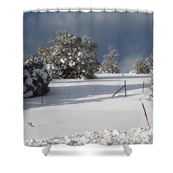 Arizona Snow 3 Shower Curtain