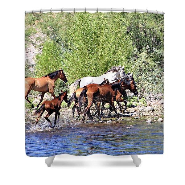 Arizona Wild Horse Family Shower Curtain