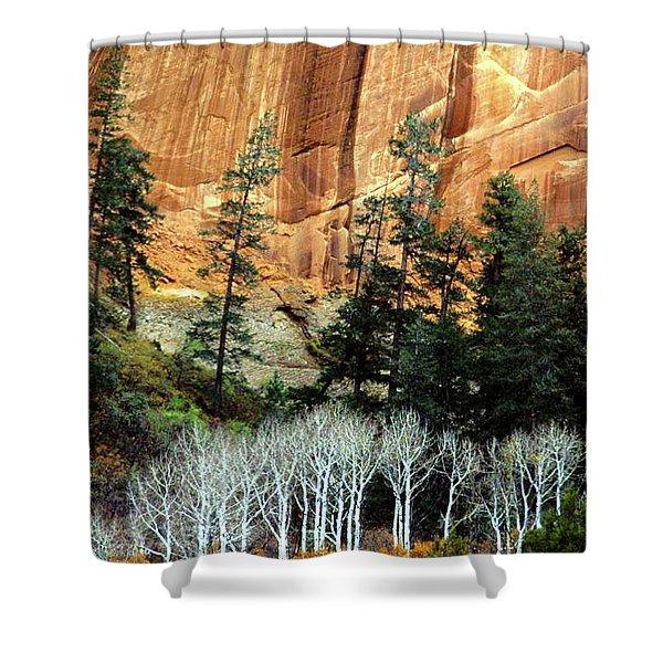 Arizona's Betatkin Aspens Shower Curtain