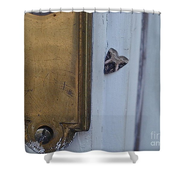 Arrowhead Doorbell Moth Shower Curtain