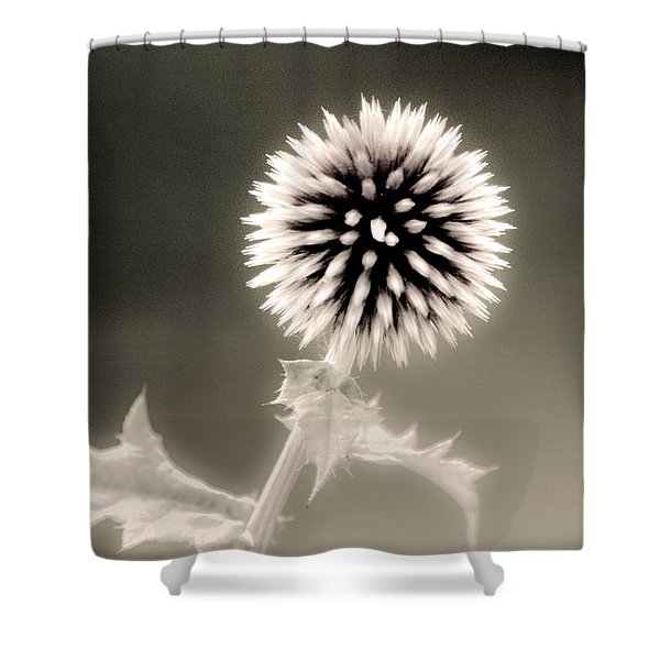 Artistic Black And White Flower Shower Curtain