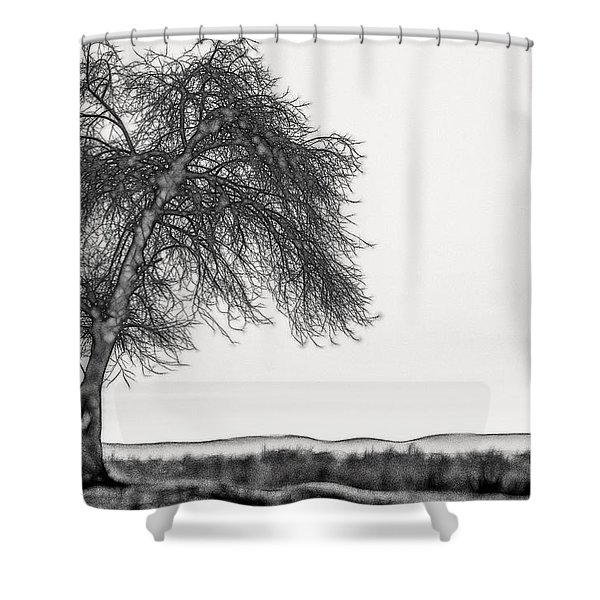 Artistic Black And White Sunset Tree Shower Curtain