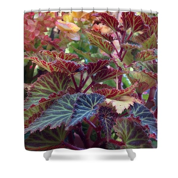 As Summer Fades To Autumn Shower Curtain